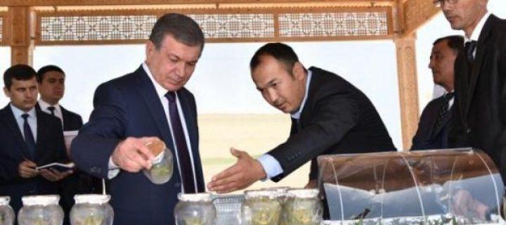 Президент қарори билан янги уюшма ташкил этилди